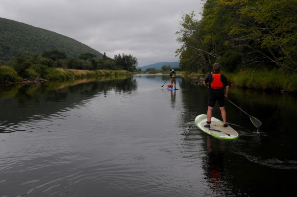 Peaceful Margaree paddling.